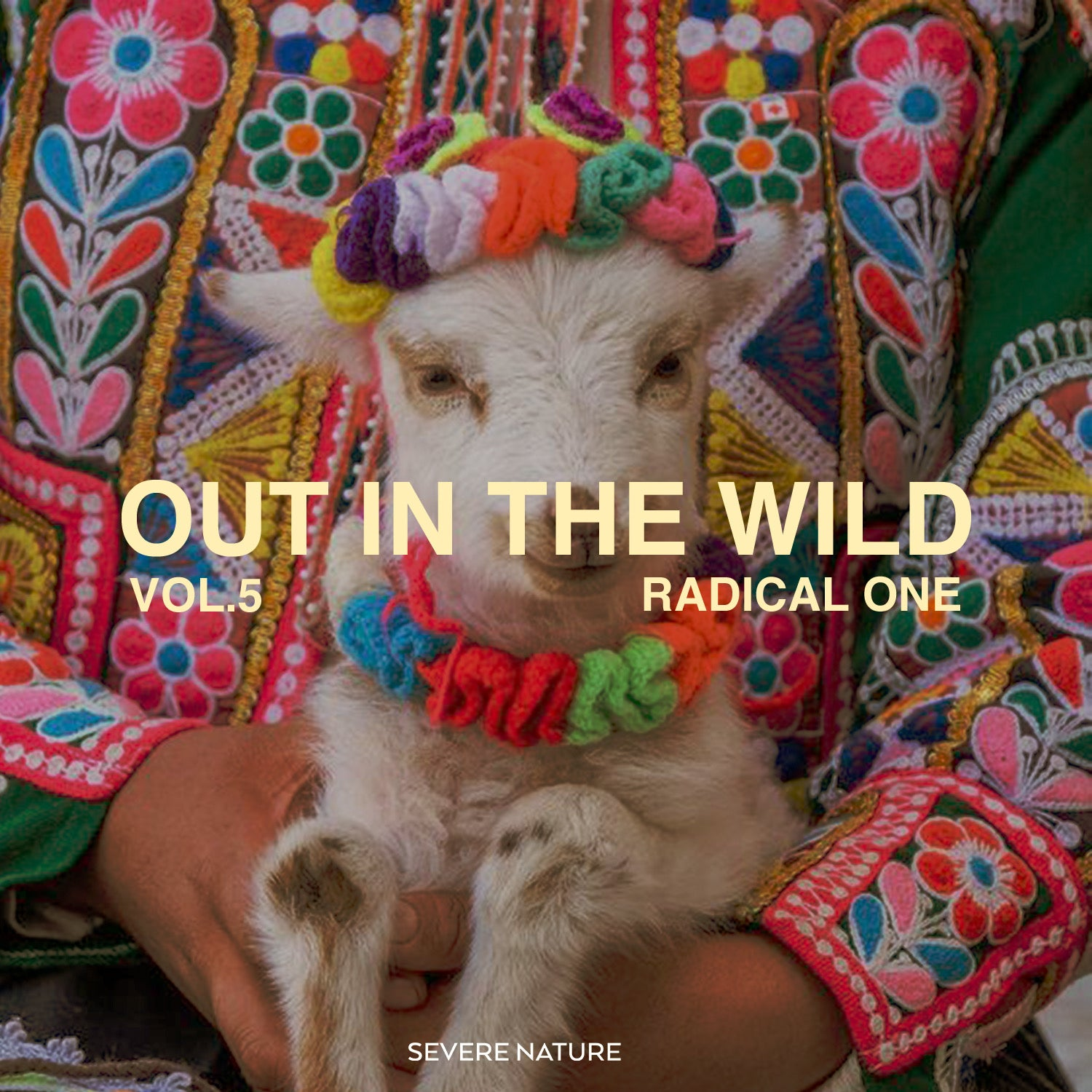 Out In The Wild Vol. 5 Curated by Radical One