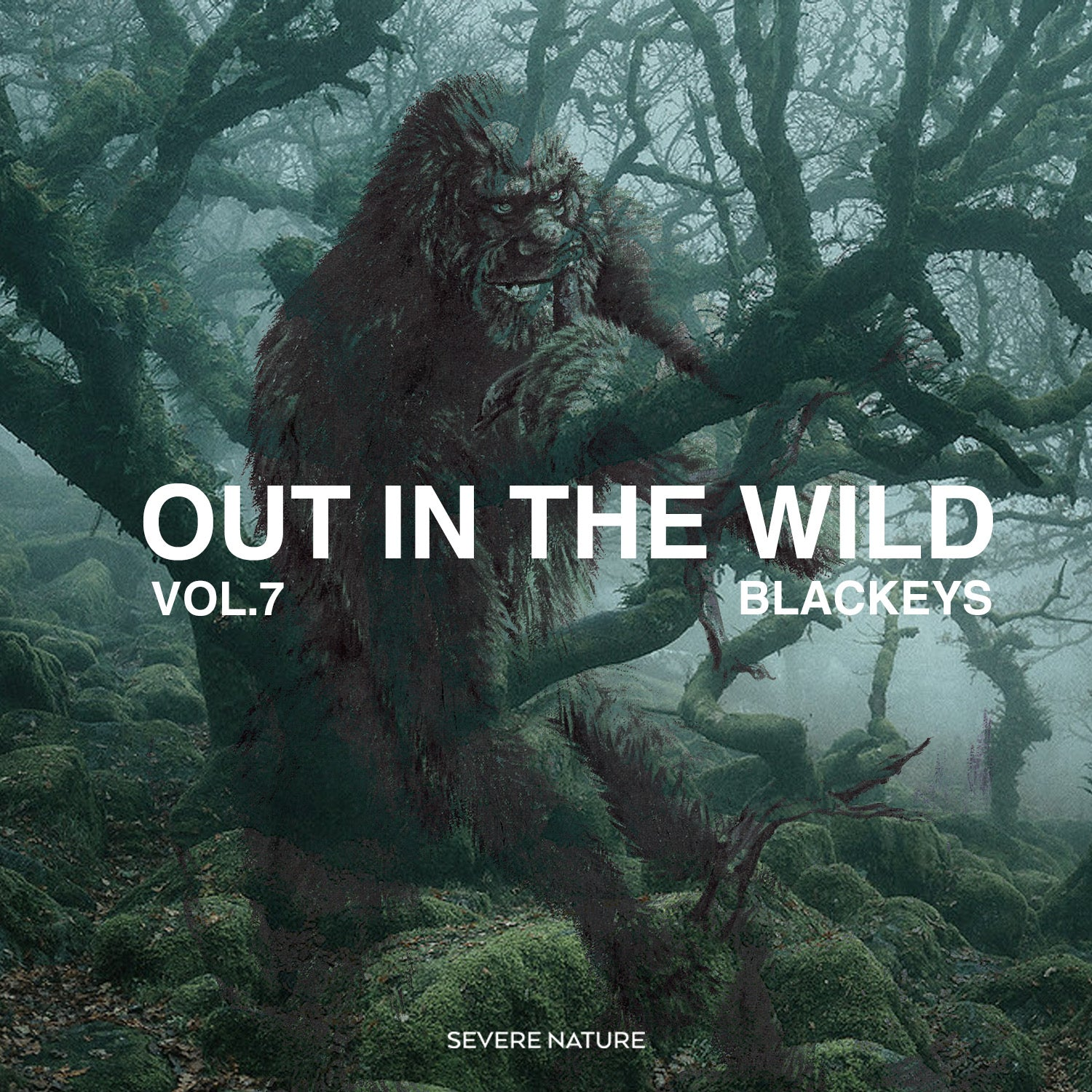 Out In The Wild Vol. 7 Curated by Blackeys
