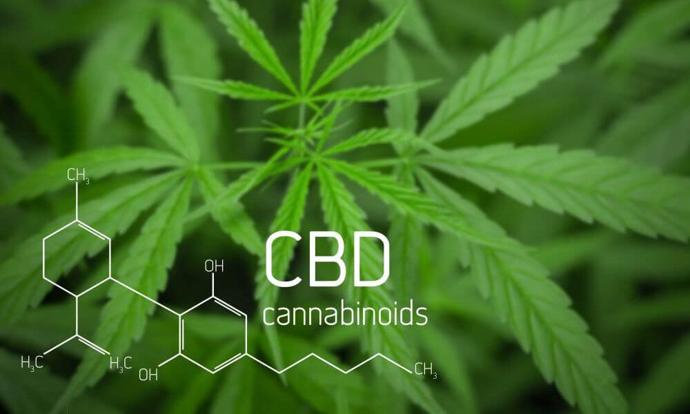 How does CBD work in the body? - 17 Cannabidiol (CBD) oil benefits