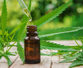 CBD oil for pain management - Can You Use Cannabidiol (CBD) For Pain?