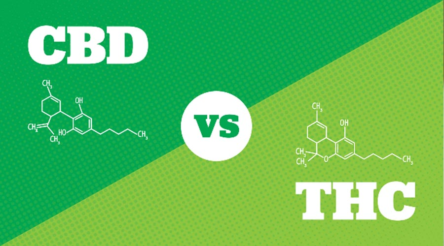 cbd vs thc mental effects
