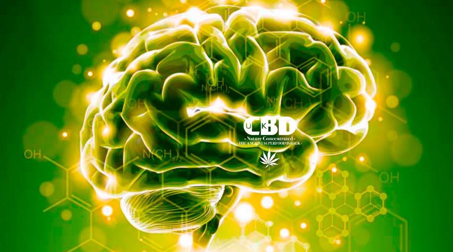 tips to finding cbd oil