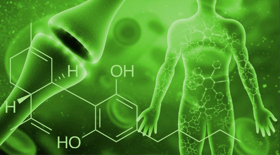 Promising Research Shows CBD May Be and Effective Treatment for Sleep, Arthritis, Psoriasis, and Parkinson's disease
