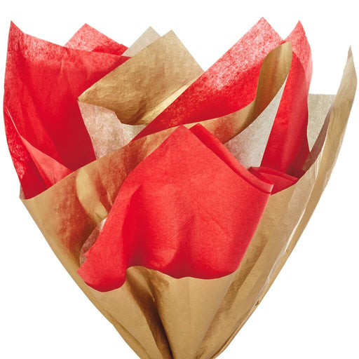 Cherry Red and Gold 2-Pack Tissue Paper
