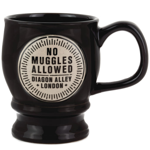 Harry Potter™ No Muggles Allowed Mug