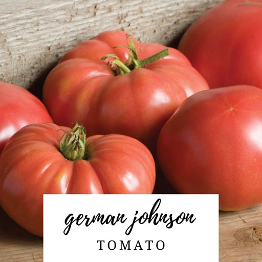 German Johnson Tomato Heirloom Seed Packet
