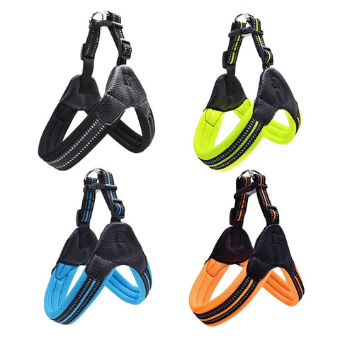 Image of Heavy Duty Dog Pet Harness Collar