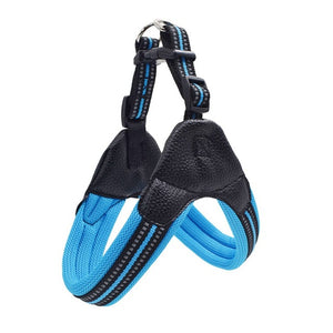 Heavy Duty Dog Pet Harness Collar