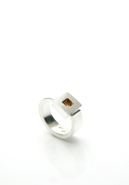 Men's Silver & Gold Ring