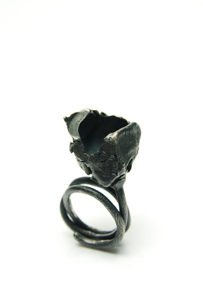 Decaye Silver Ring