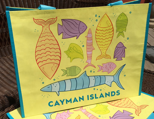CUSTOM DESIGNED for RETAIL or PROMOTION: Reusable Bags made from recycled plastic bottles