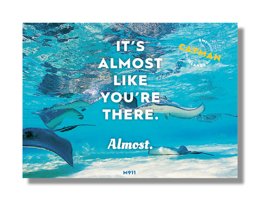 MIN 25 pc MAGNET: It's Almost Like You're There: Stingrays magnet - 25 per pack
