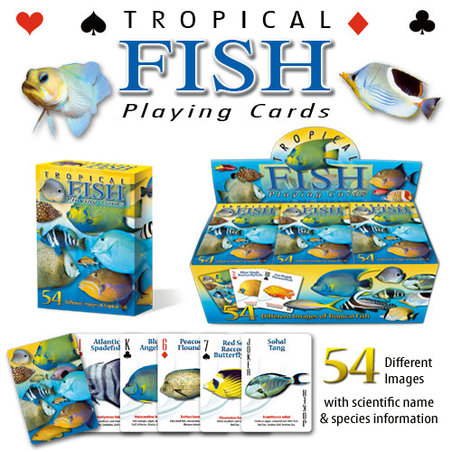 Cayman Islands playing cards with the fish of the Cayman Islands! Tropical Fish playing cards.