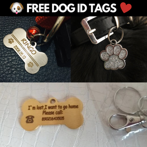 FREE Personalized Dog ID Tag
