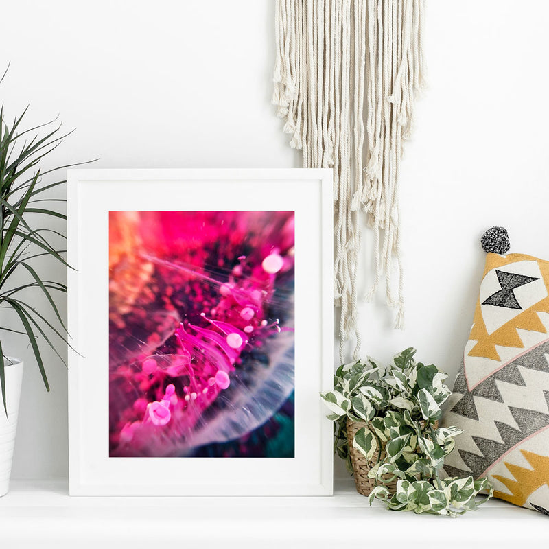 Pink Bloom Macro Photo Art Print