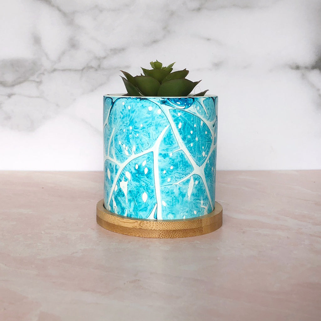 Succulent Planter - Tropical Paint