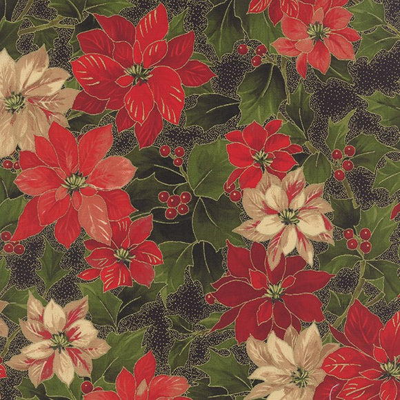 33100 14M - Poinsettia Holly Black