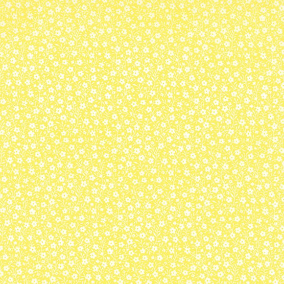 33186 13 - Lemon Drop