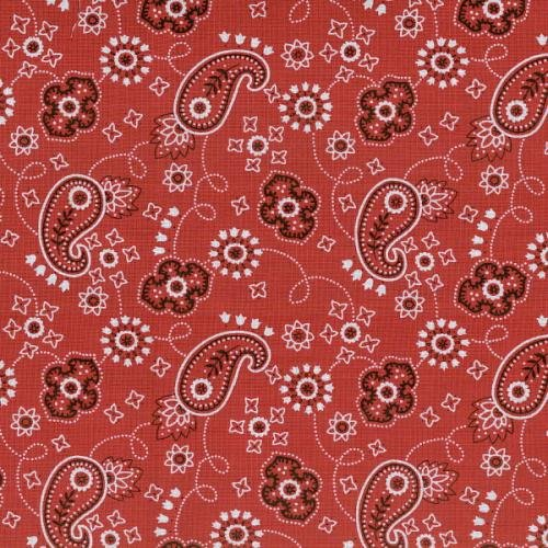 BTR6432 Red Round Up II Bandana