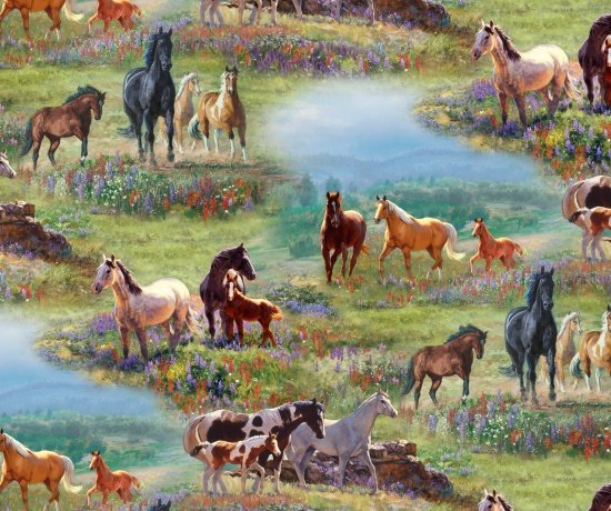 8702MULTI - Horses in Wild Flower Fields