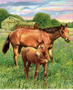 Mare and Foal Panel - PD7010 - MARE