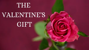 THE VALENTINE'S GIFT