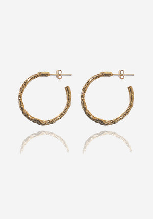 Vesta Hoops Gold