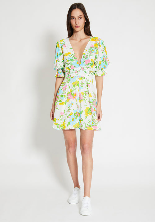Caliente Mini Dress Ilona Print