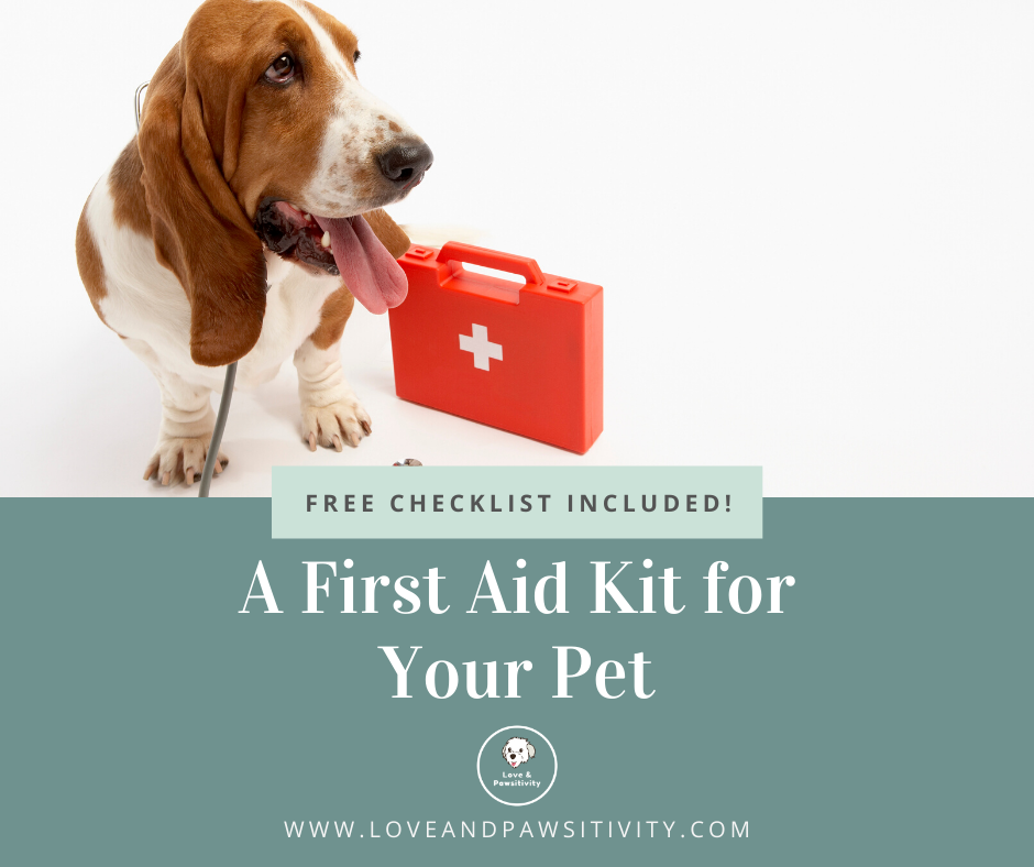 How to Create a First Aid Kit for Your Pet (Includes FREE Downloadable Checklist)