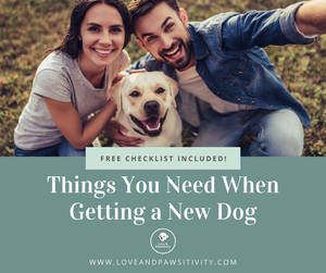 Things You Need When Getting a New Dog