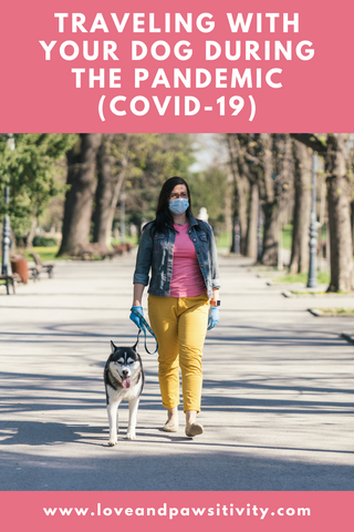 Traveling With Your Pet During the Pandemic (COVID-19)