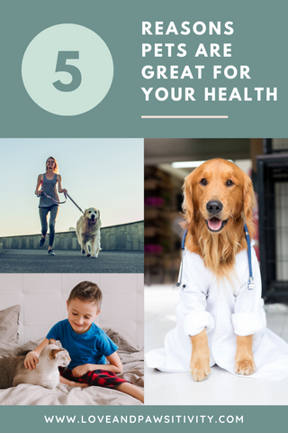 Reasons Pets are Great for Your Health