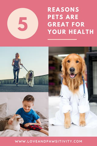 Reasons Dogs are Great for Your Health
