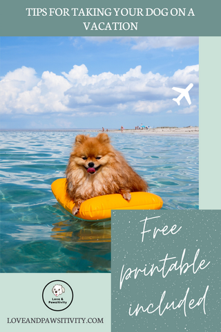 Tips for Taking Your Dog on a Vacation Free Printable Included