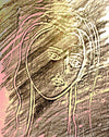 Muse Stone Rubbing in Color
