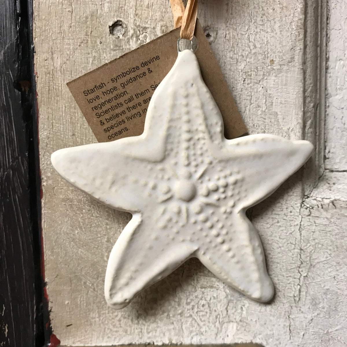 Ornament Starfish White