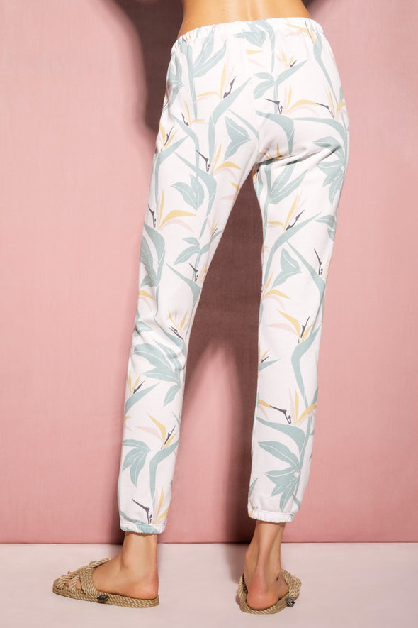 Birds Of Paradise Knox Pants | Multi Colored