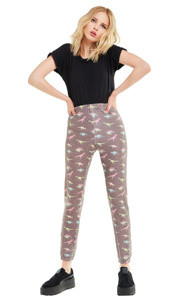 Retro Dinos Knox Pants | Multi Colored