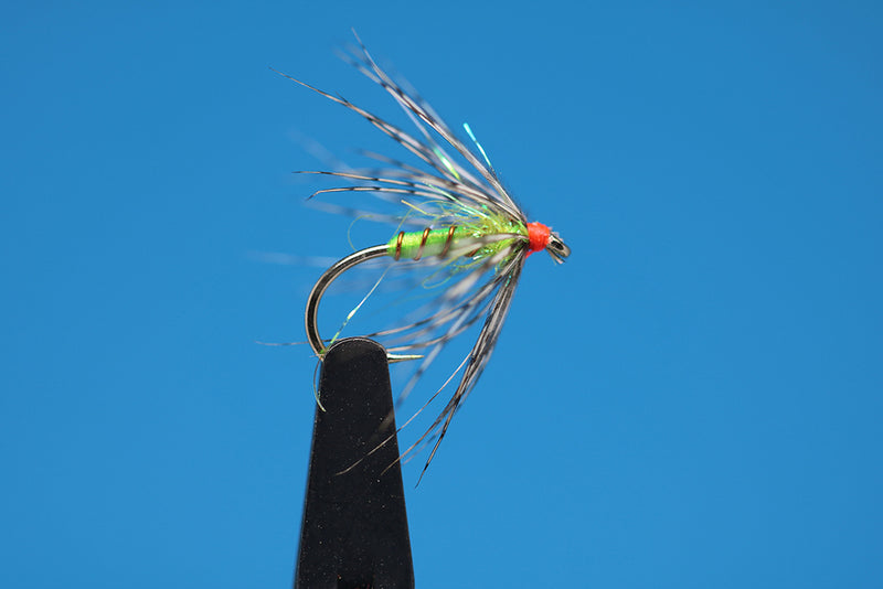 Chartreuse And Partridge Soft Hackle