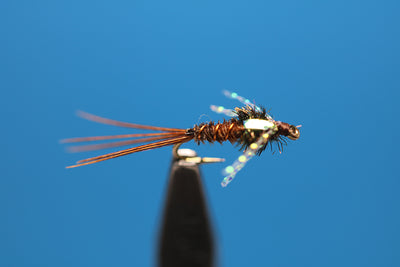 Opal Flashback Pheasant Tail Nymph, with Krystal Flash Legs