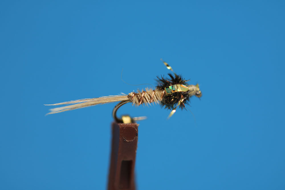 Blonde Pheasant Tail Flash Back
