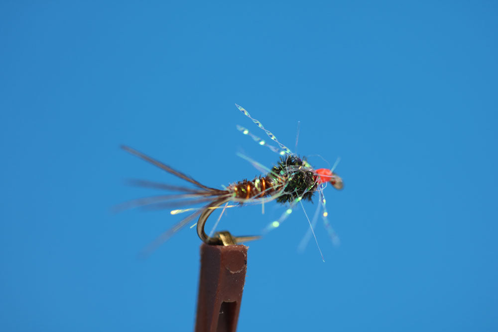 Electric Pheasant Tail