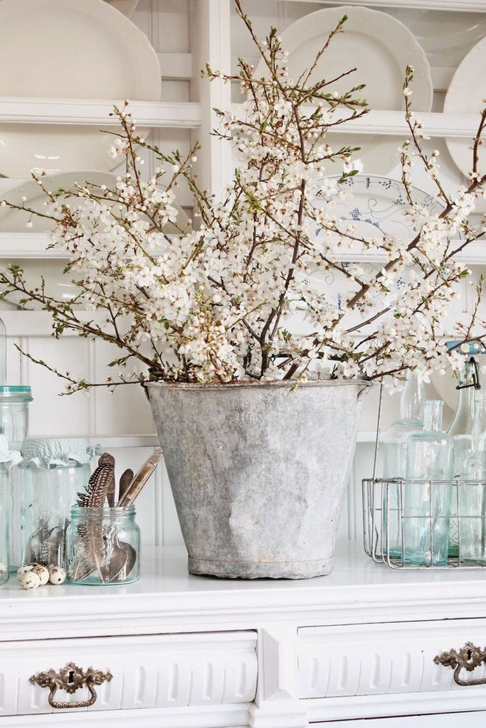 Large Galvanized Planter with White Blooms Surrounded by Transparent Glass Containers