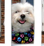 Puppy Bumpers - Safety Collars