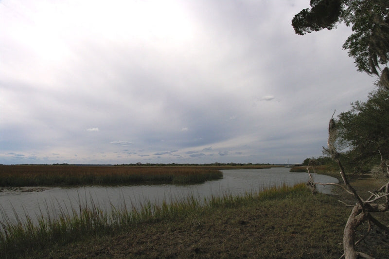 Marshes next to Dungeness