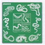 Snakes Cotton Bandana