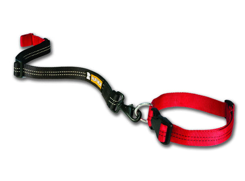 Ruffwear Quick Draw Leash - Leash Worn Around a Collar