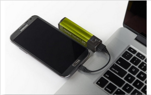 Goal Zero Flip 10 USB Recharger - GZ Green
