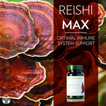 ReishiMax GLp | 60 Capsules - Dietary Supplements - Nu Skin - MC Beauty Buys
