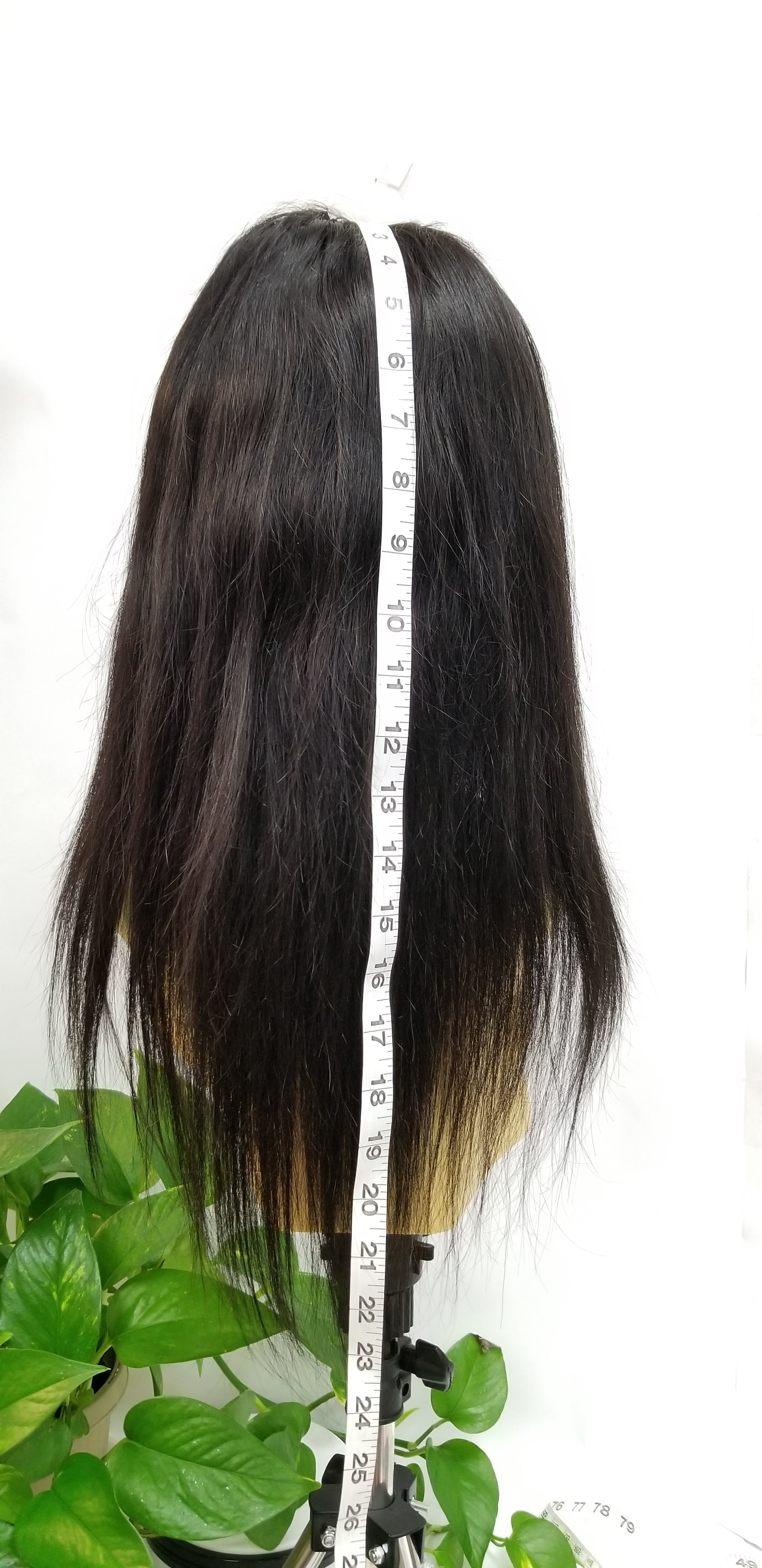 100% Brazilian Human Hair Full Hand Tied Lace Wig